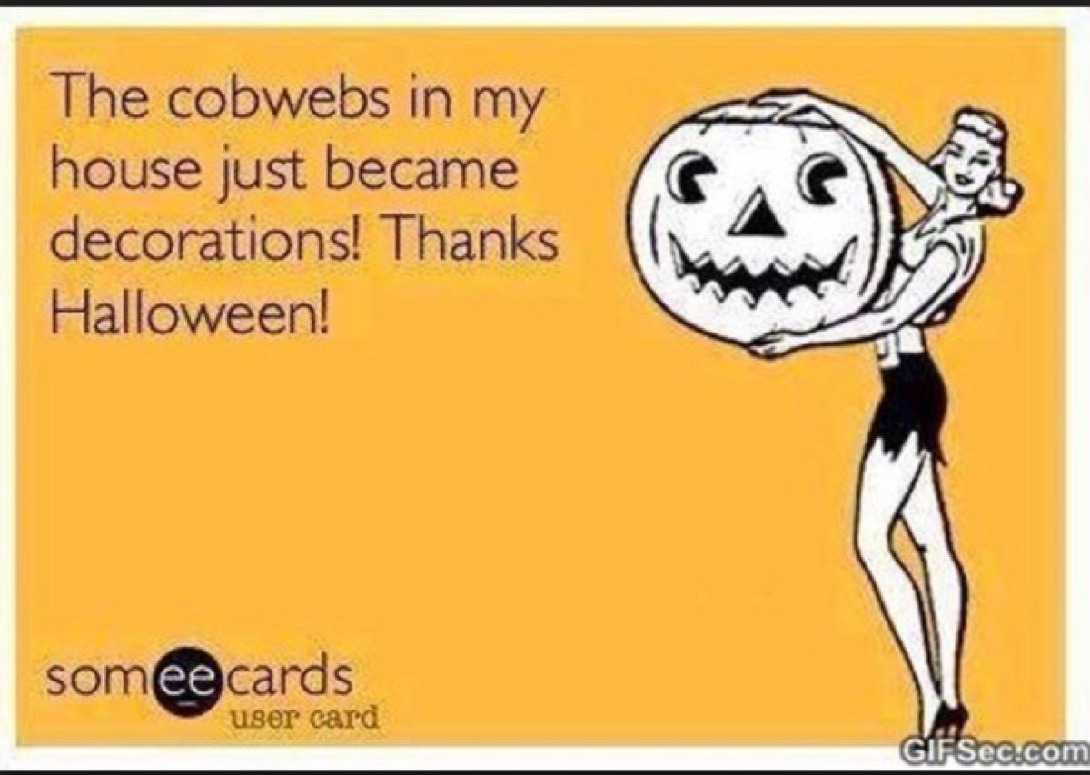 funny halloween meme decorations