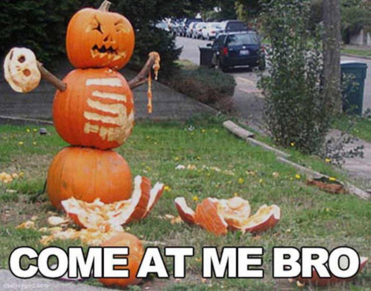funny halloween meme pumpkin