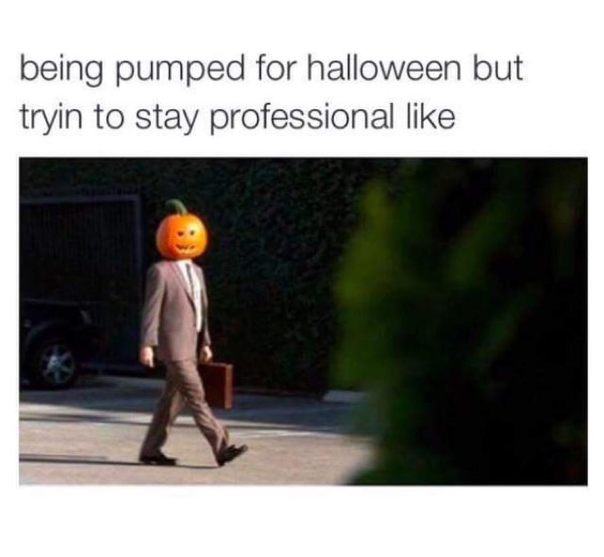 professional pumpkin in suit, halloween memes