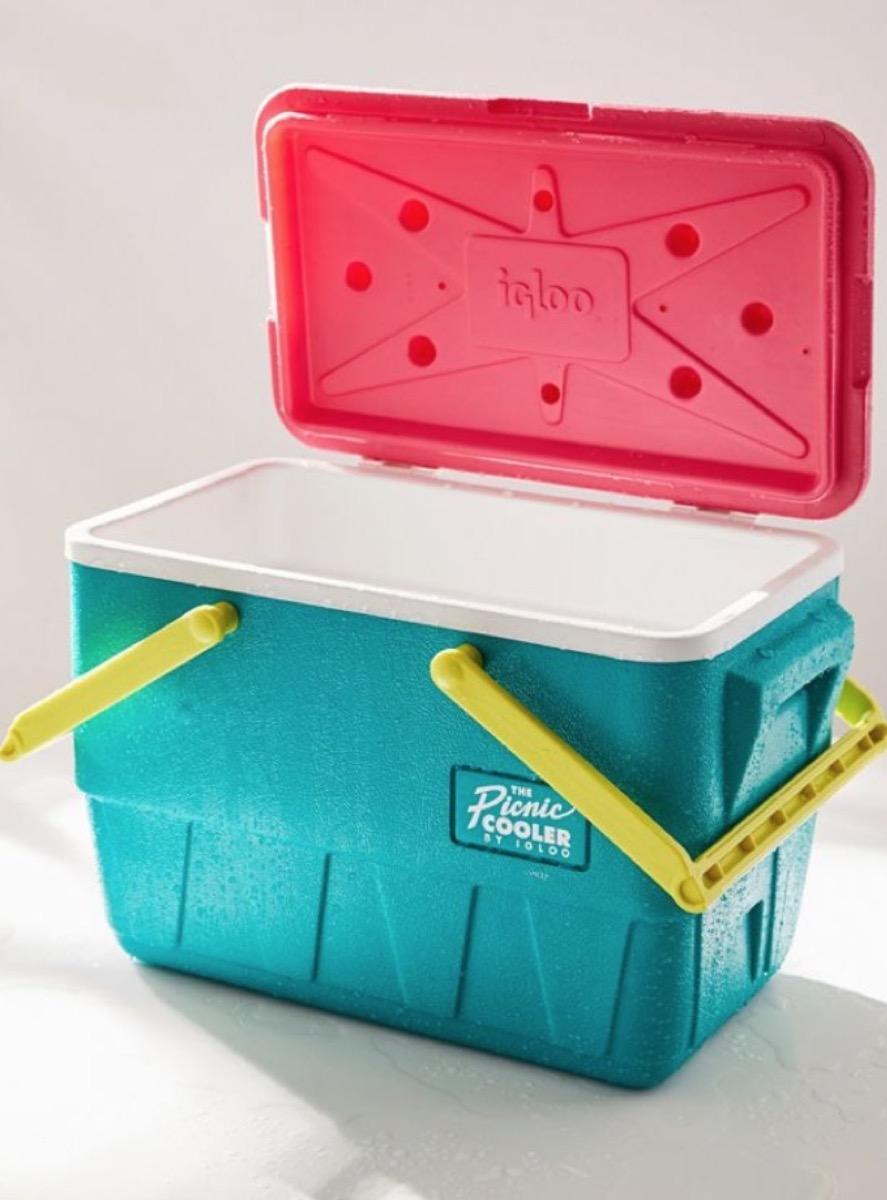 neon picnic cooler, picnic essentials