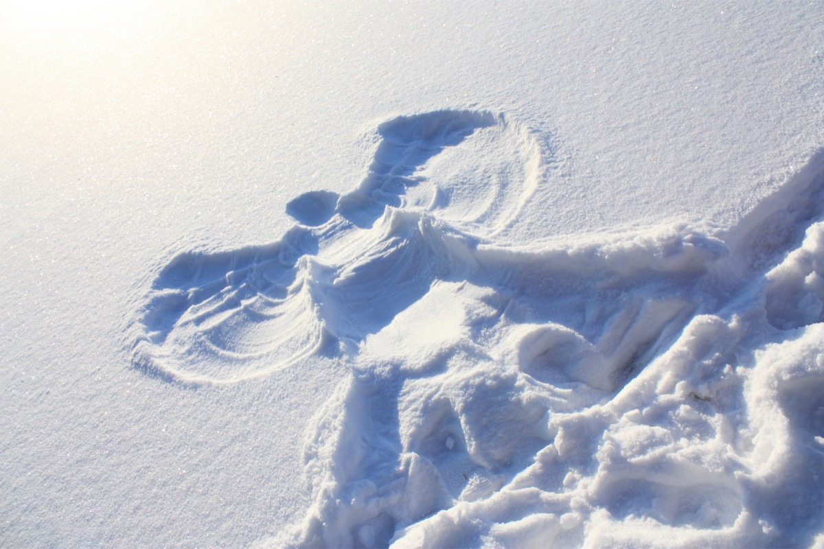 snow angel in the snow, state world record