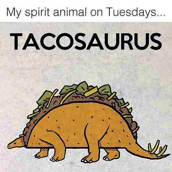 taco tuesday meme tacosarus