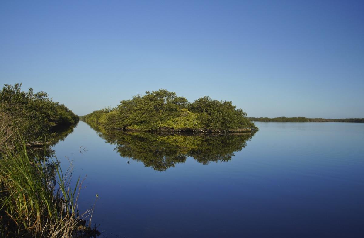 Merritt Island National Wildlife Refuge in Titusville Florida