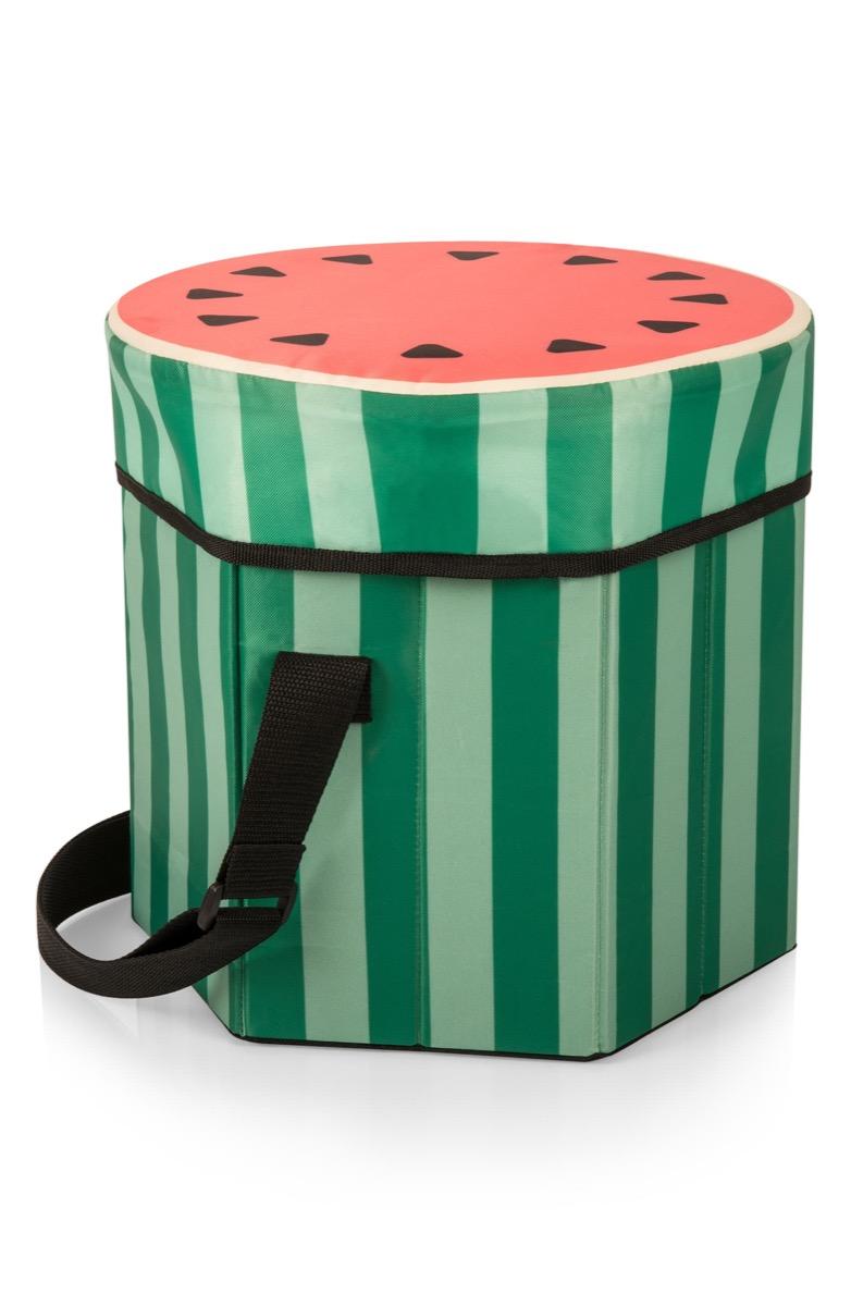 watermelon picnic basket, picnic essentials