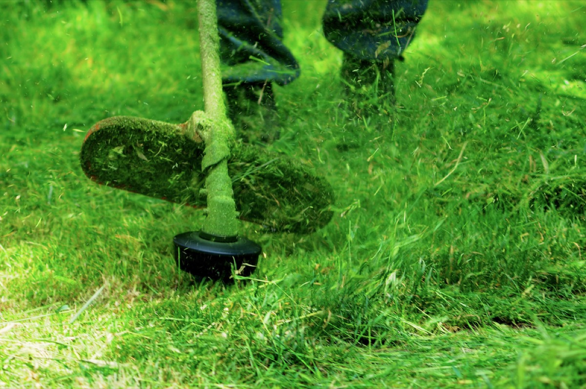 person cutting grass with weed whacker, backyard dangers