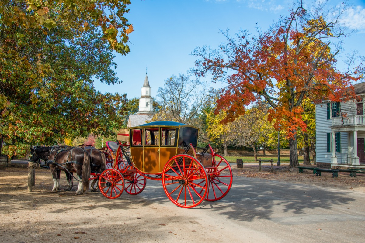 A horse drawn carriage along the street in Williamsburg in the Fall