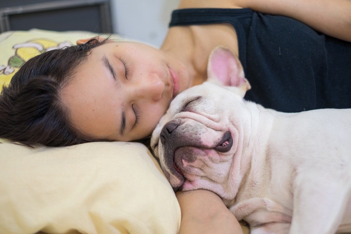 woman sleeping with french bulldog things you're doing that would horrify sleep doctors