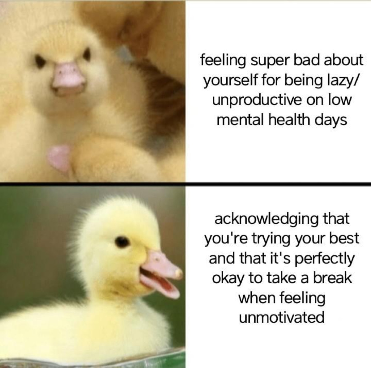 """Photo of angry duckling with caption """"Feeling super bad about yourself for being lazy/unproductive on low mental health days"""" and photo of happy duckling with caption, """"Acknowledging that you're trying your best and that it's perfectly okay to take a break when feeing unmotivated."""""""