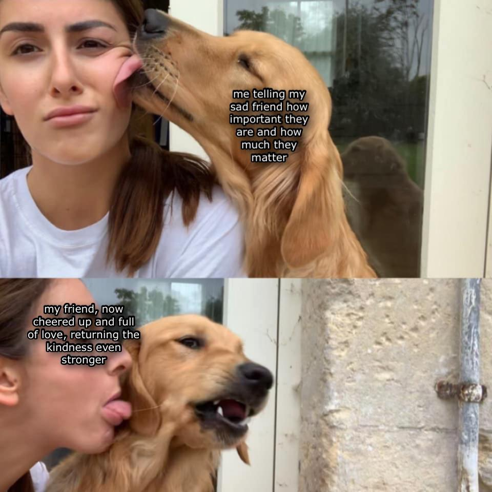 """Dog licking woman with caption """"Me telling my sad friend how important they are and how much they matter"""" and photo of woman licking dog with the caption """"My friend, now cheered up and full of love, returning the kindness even stronger."""""""
