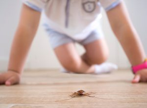 Little boy hovers over dead roach on floor, ways you're inviting pests into your home