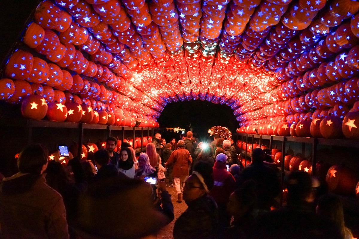 Pumpkin archway at The Great Jack o Lantern Blaze - Best Fall Festivals