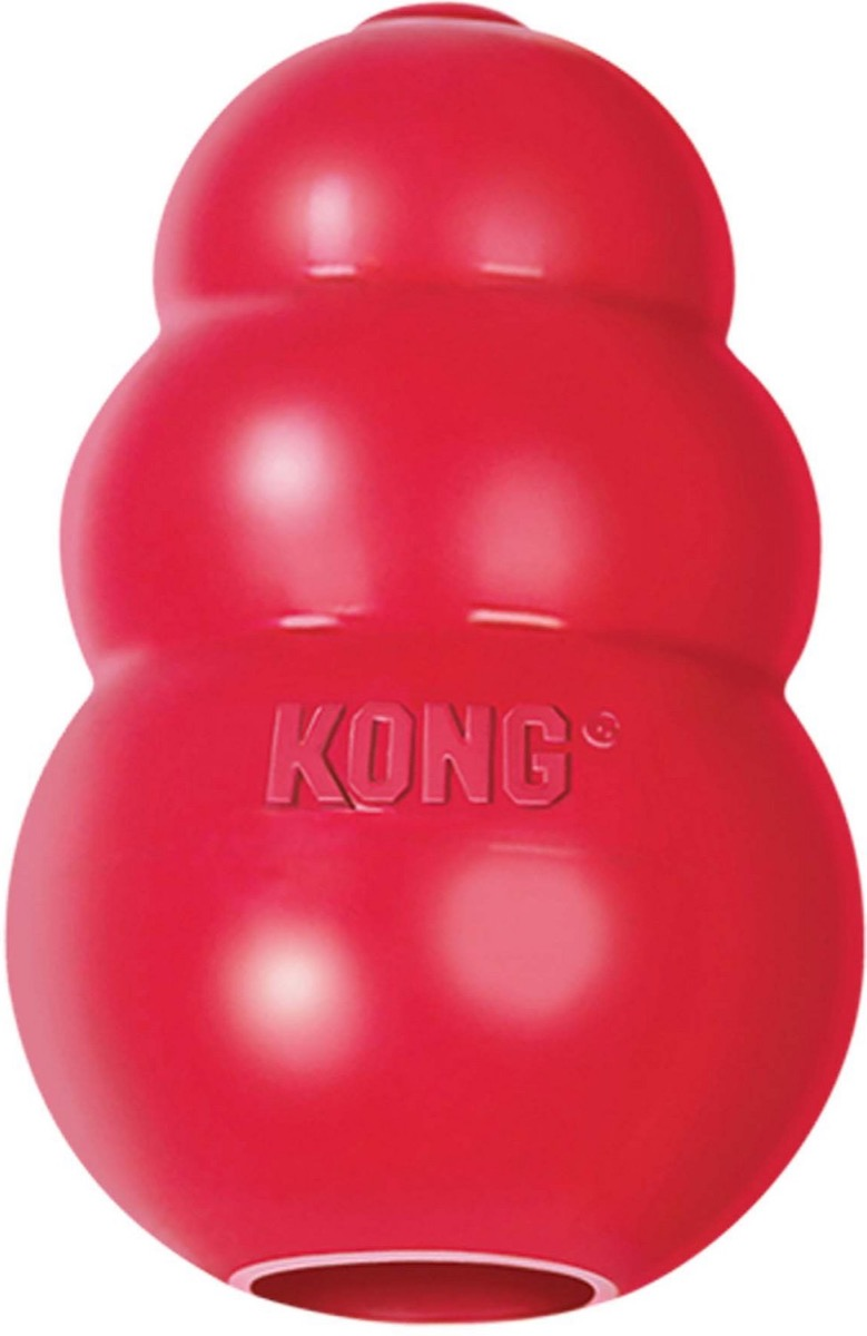 red kong toy, best chew toys for puppies