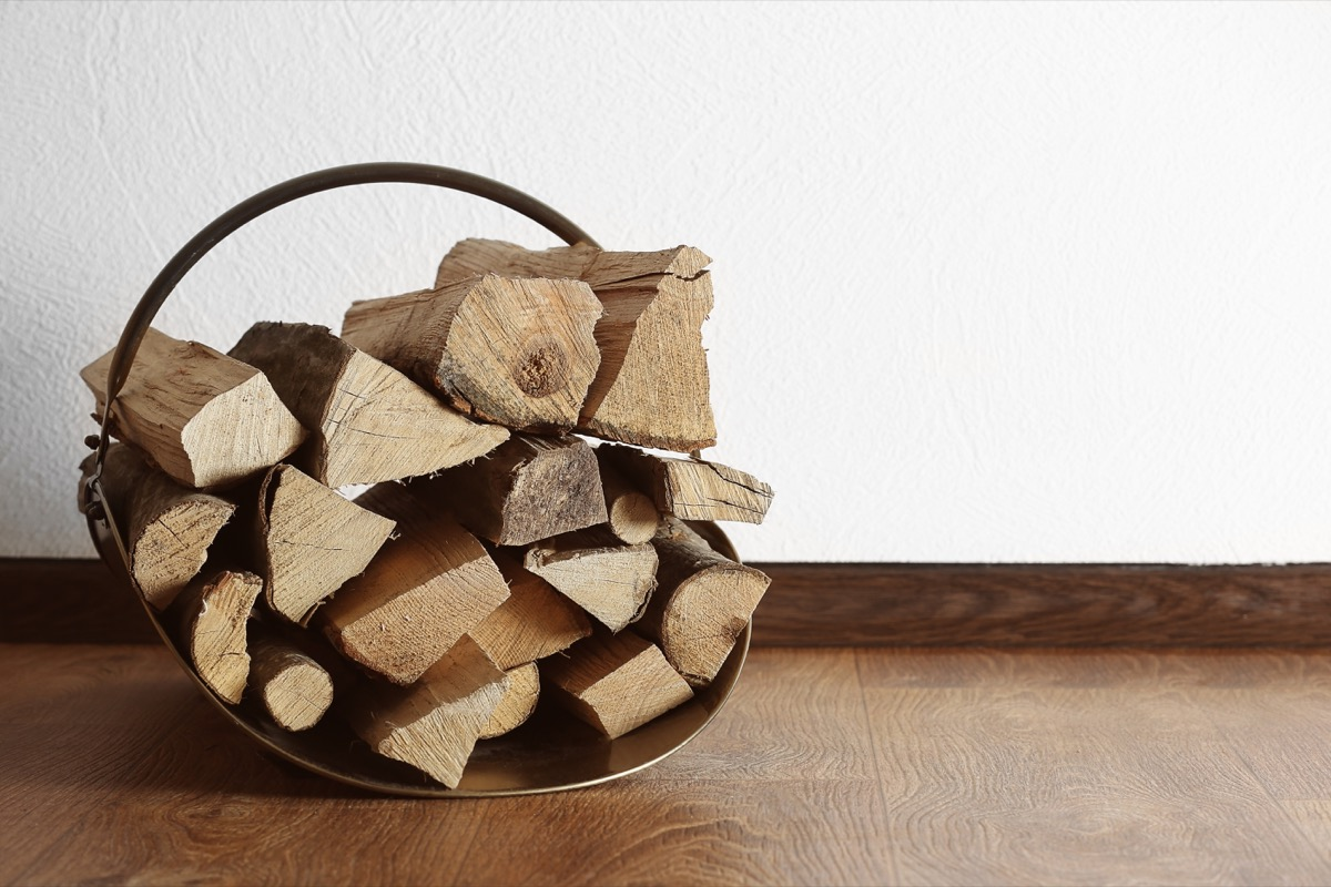 basket of firewood in home things in your house attracting pests
