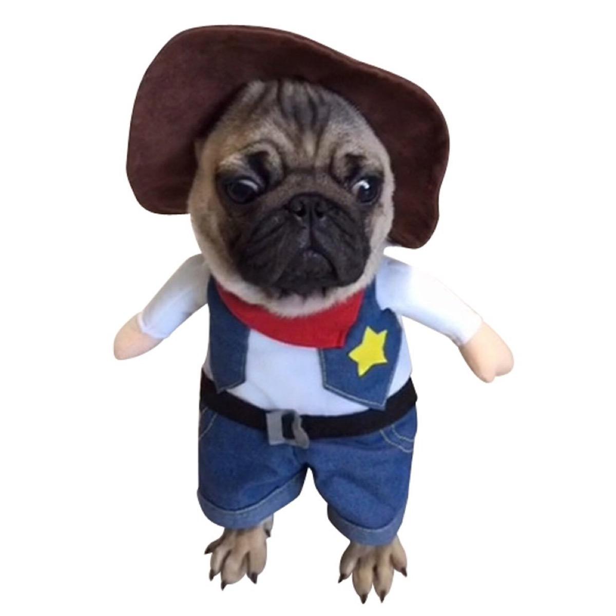 dog cowboy costume, dog halloween costumes
