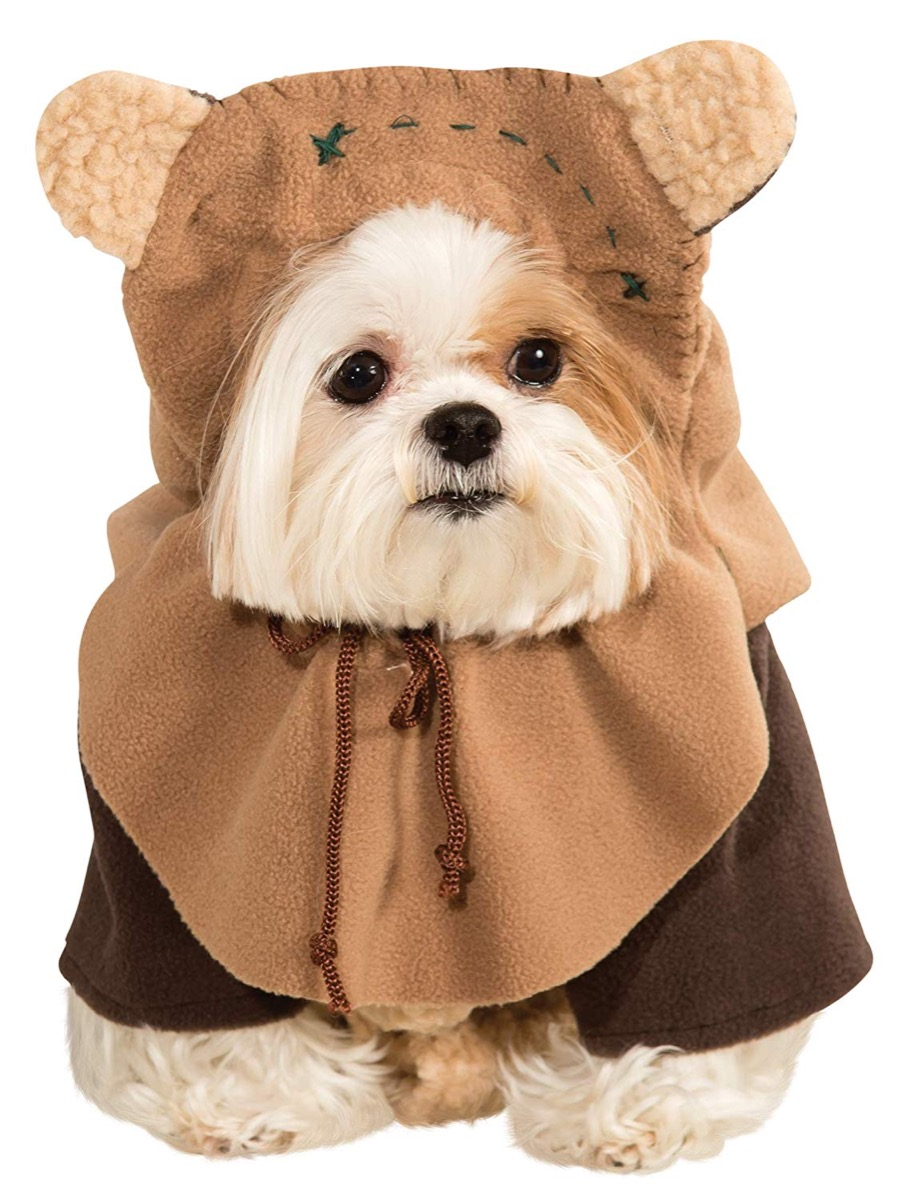 dog in ewok costume, dog halloween costumes