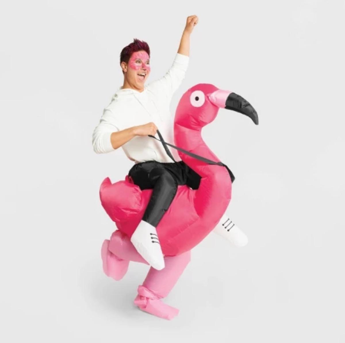 flamingo rider costume, best halloween costumes