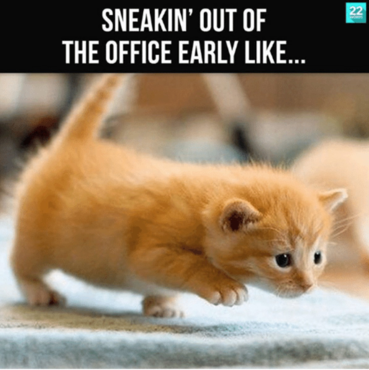 sneaking out of the office like meme