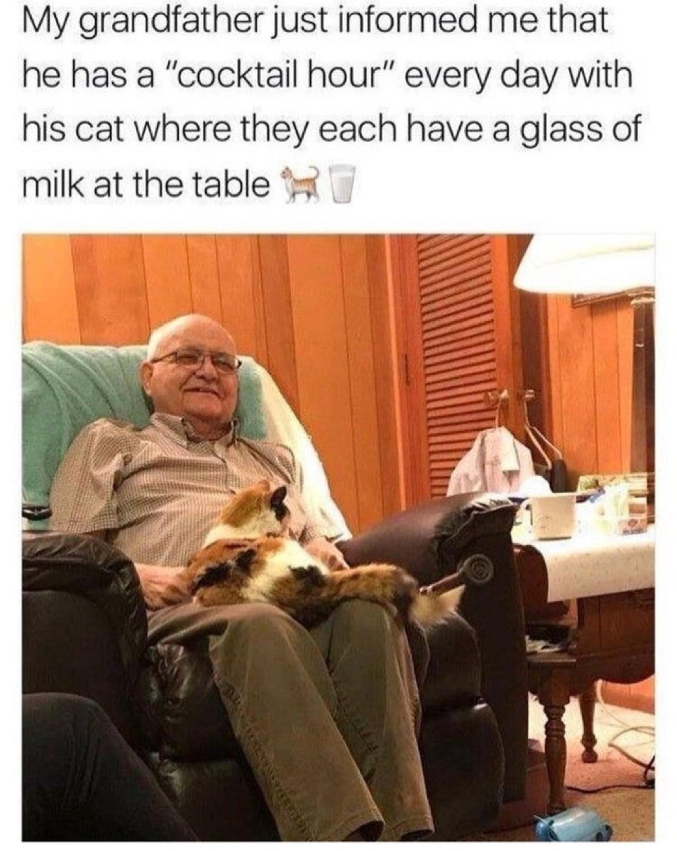 """Senior man with cat on his lap captioned, """"My grandfather just informed me that he has a 'cocktail hour' every day with his cat where they each have a glass of milk at the table."""""""