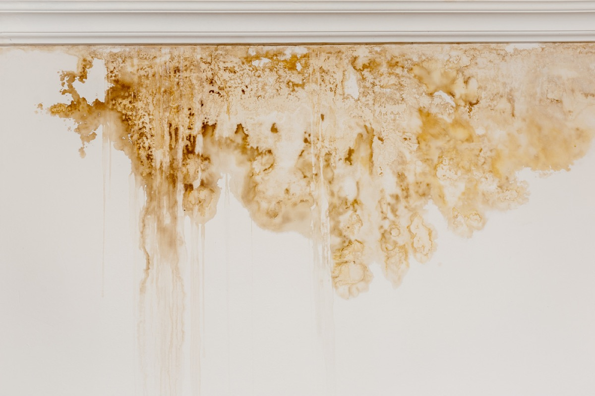 water stain under window, signs your home is falling apart