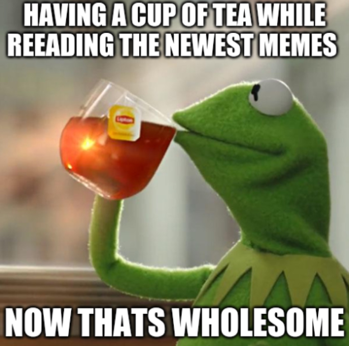 """Kermit sipping tea with the caption """"Having a cup of tea while reading the newest memes. Now that's wholesome."""""""