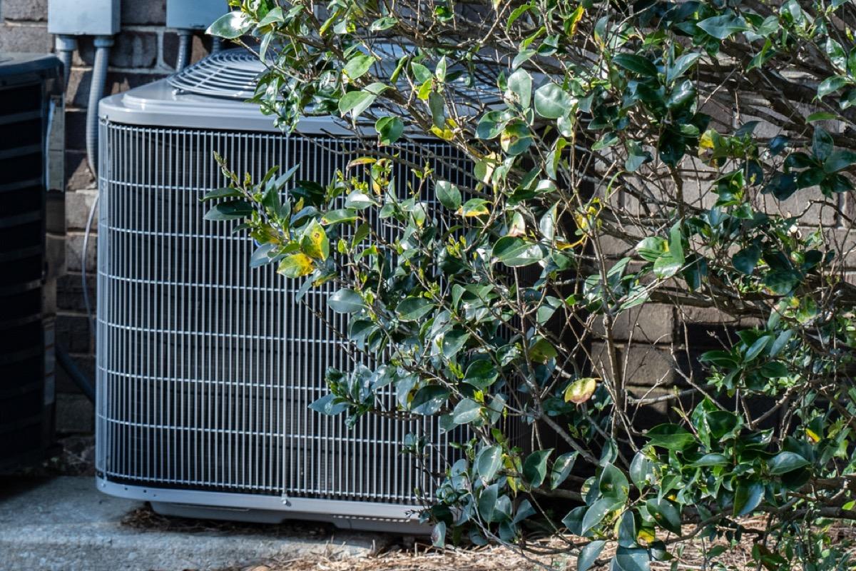 HVAC unit behind shrubs, ways you're damaging your house