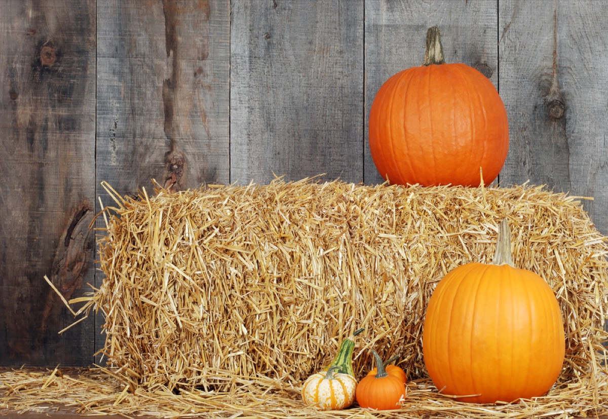 hay bales and pumpkins, fire prevention tips