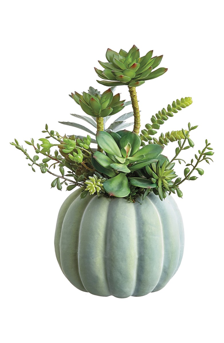 pumpkin statue with succulents, fall home decor