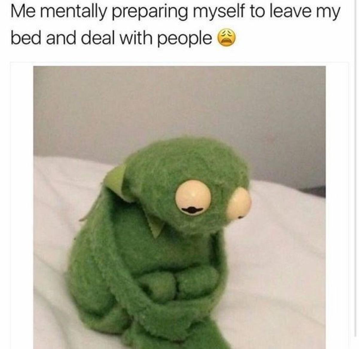 Sad Kermit Monday meme