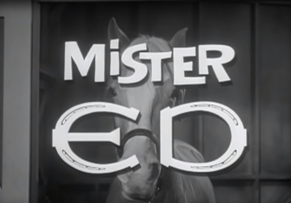 mister ed theme
