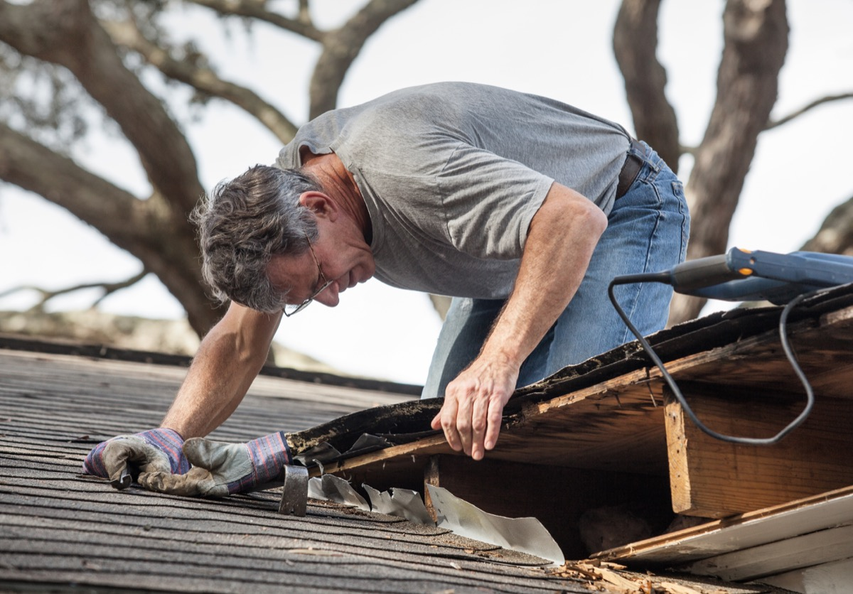 man looking at moldy roof