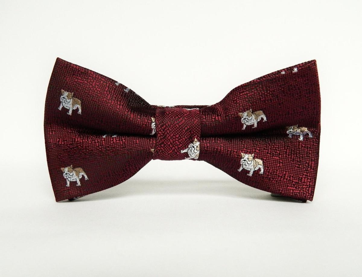 burgundy bow tie with bulldog print