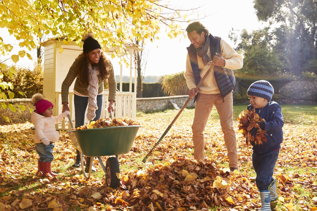 black mother, father, and two little girls raking leaves into green wheelbarrow on a fall day