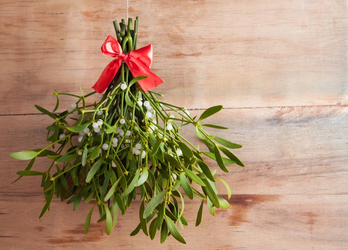 mistletoe on wooden background