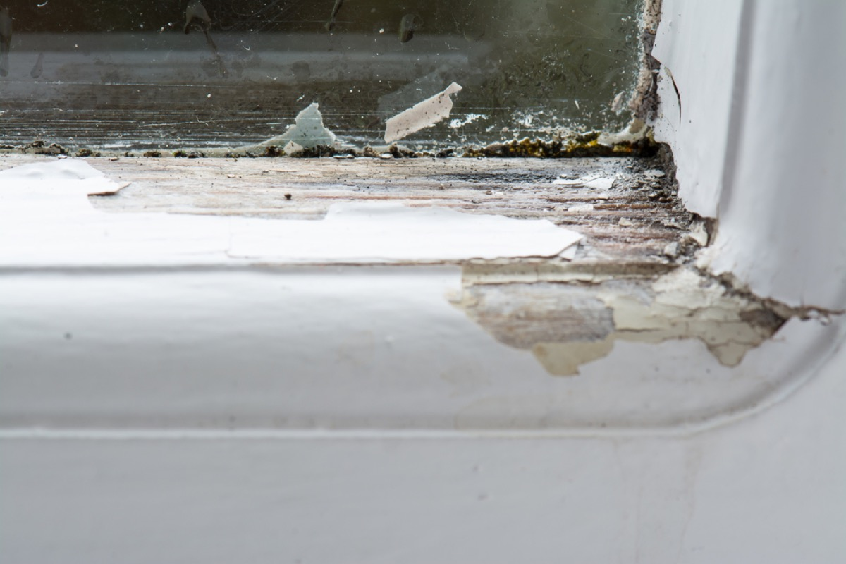 white window frame with rotten wood