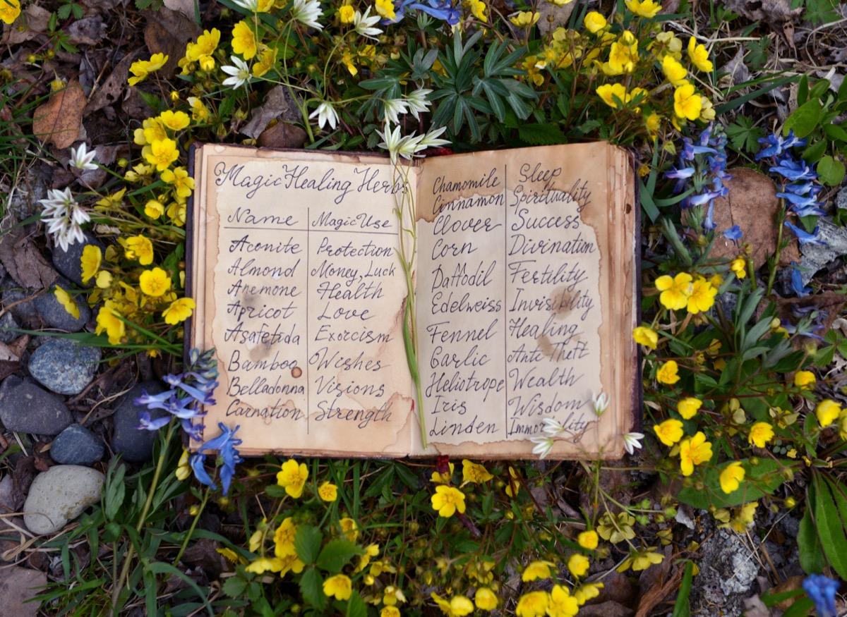 witch spellbook