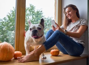 woman using phone, while sitting on a windowsill decorated for Thanksgiving, with her french bulldog