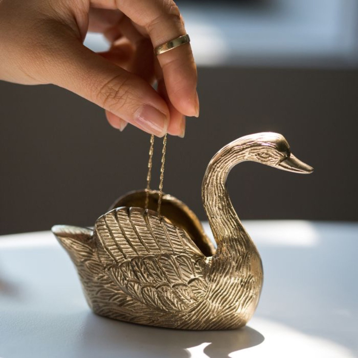 person putting necklace into swan dish
