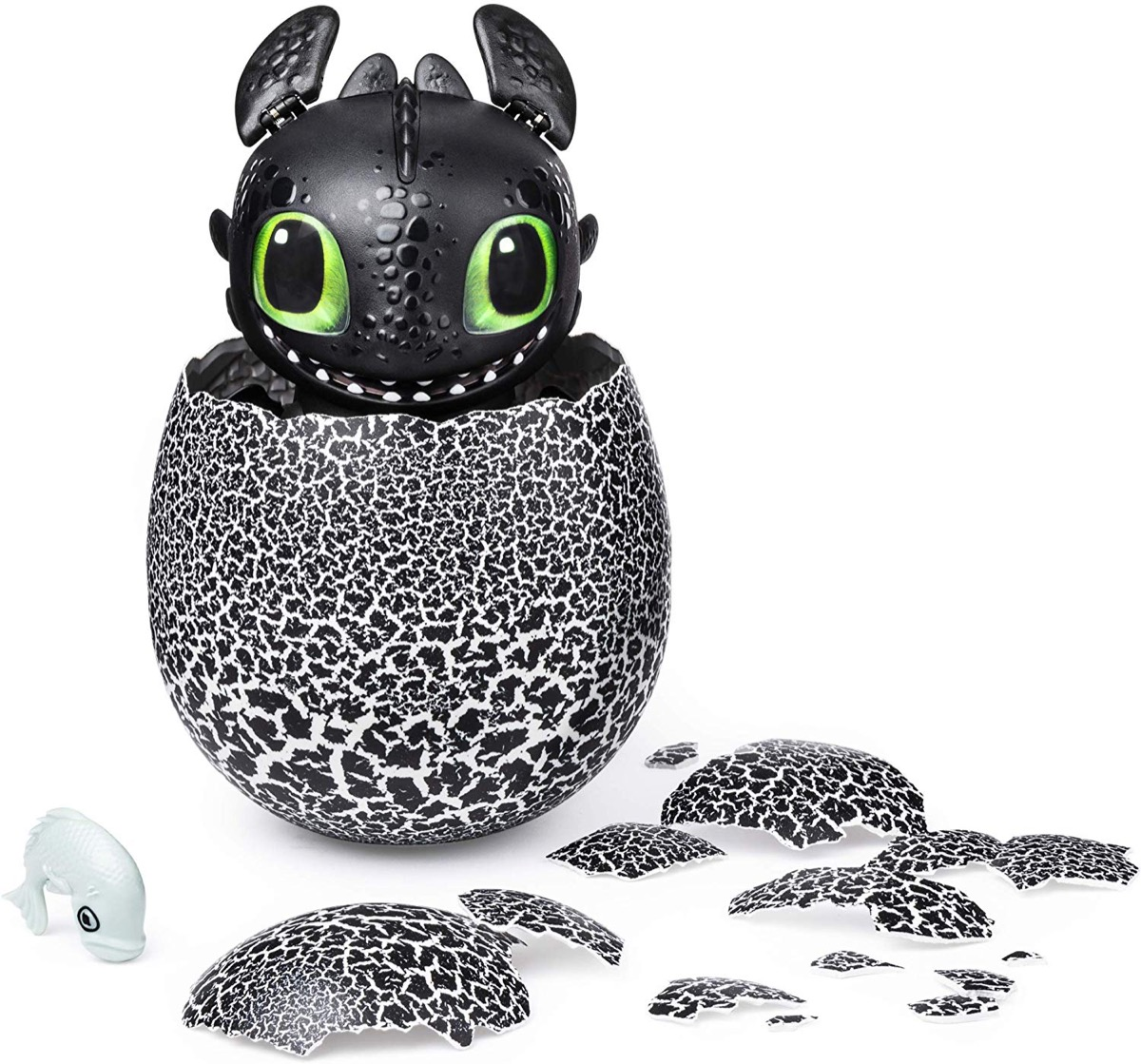 hatched toothless the dragon