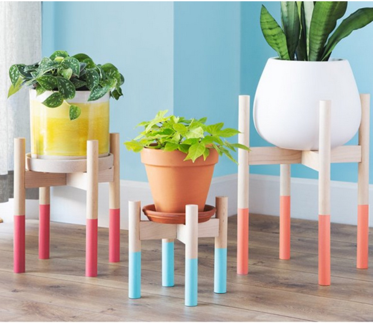 three potted plants on wooden plant stands with colorful legs