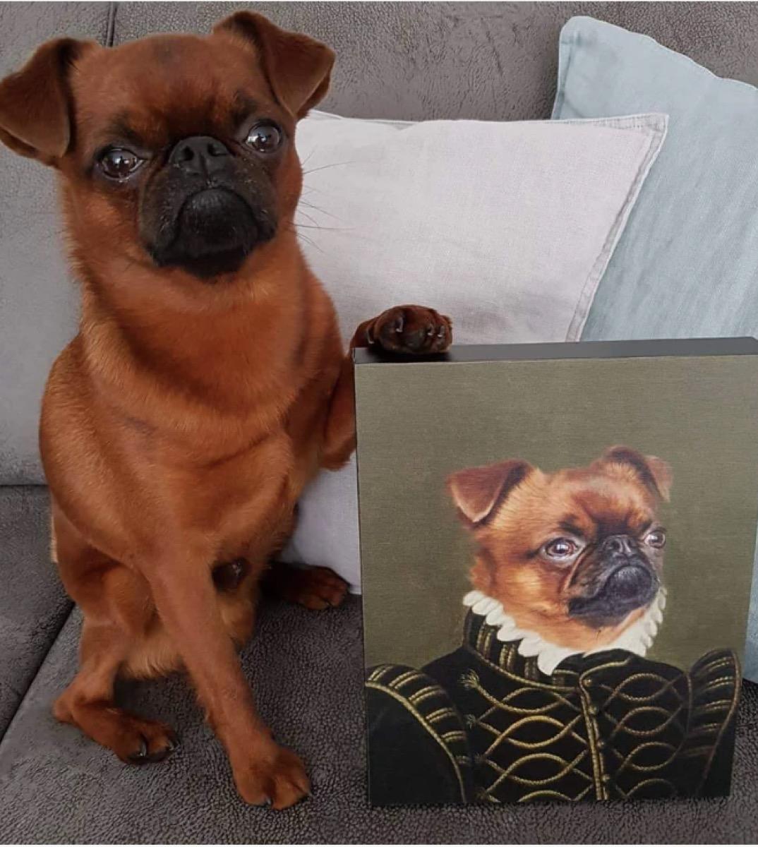 red dog sitting next to renaissance portrait of himself