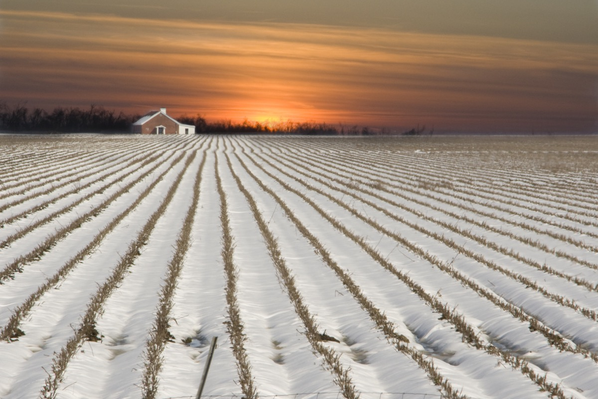 Arkansas field covered in snow