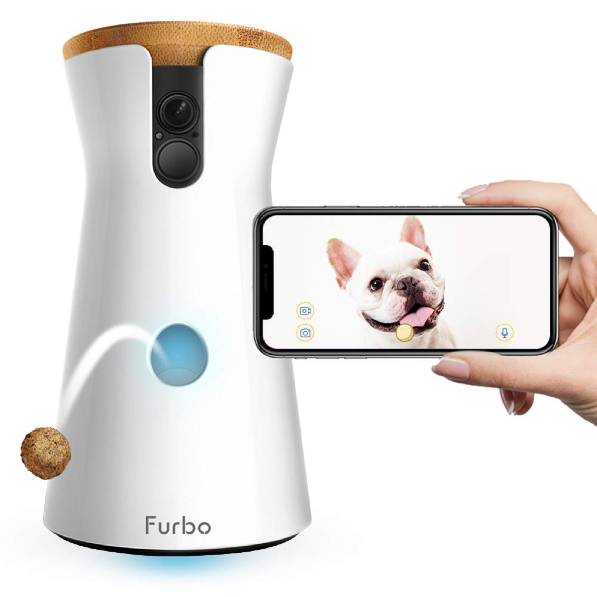 furbo dog camera and white hand holding iphone