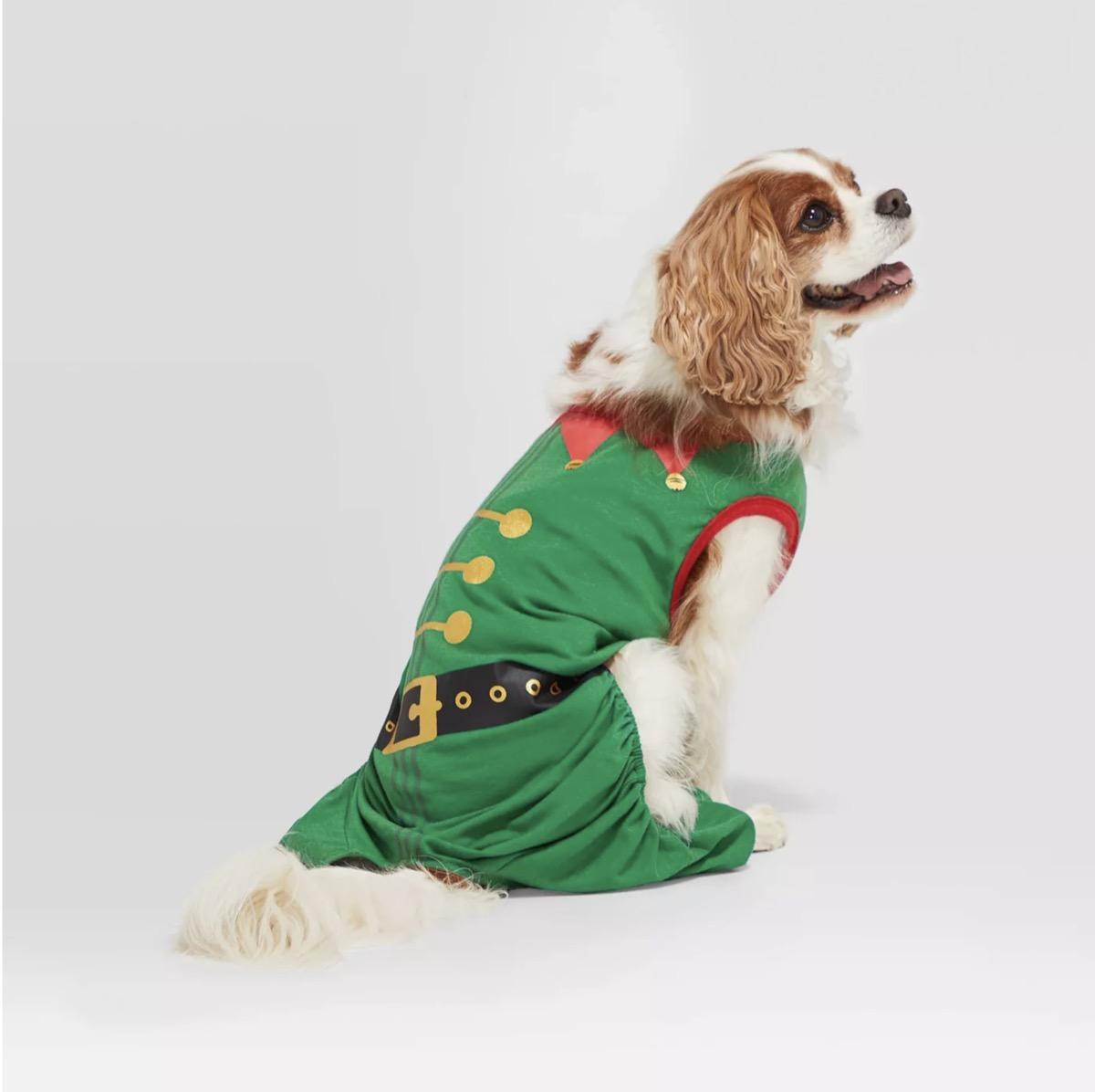 holiday elf pet pajamas