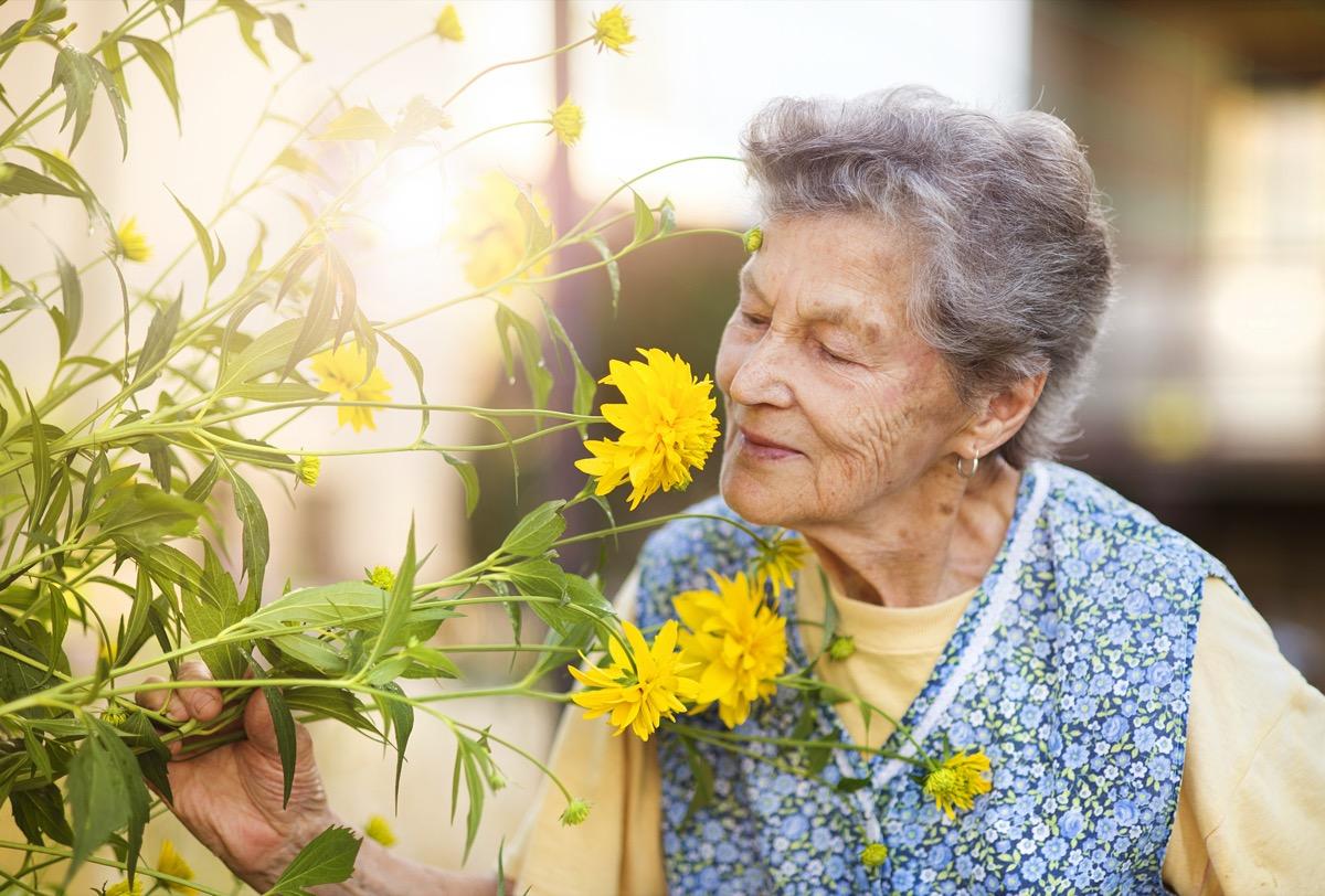 senior woman smells yellow flowers