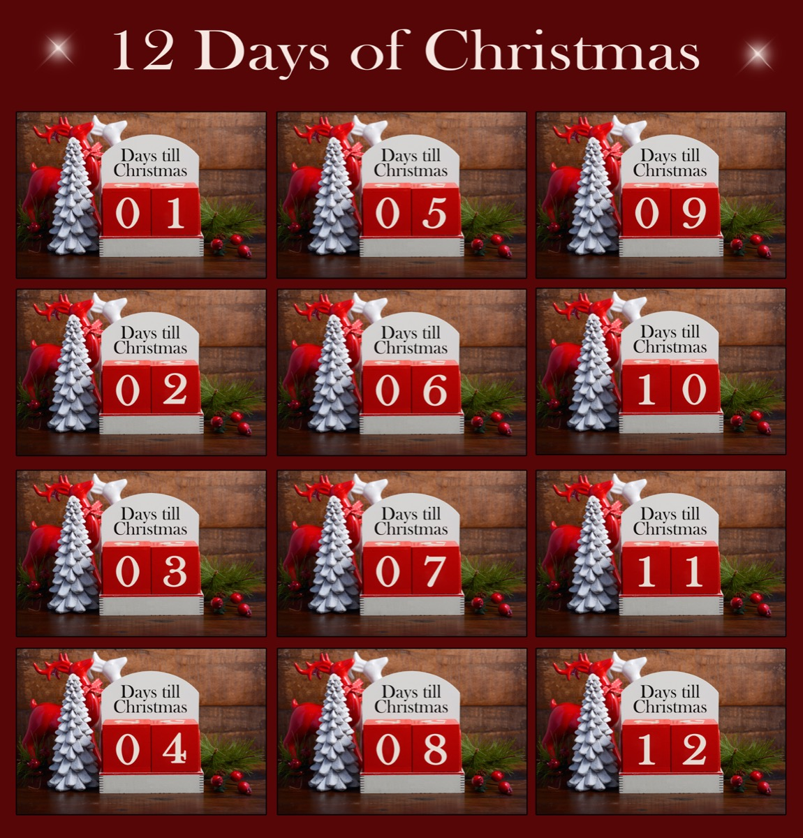 12 days of christmas illustration with calendars