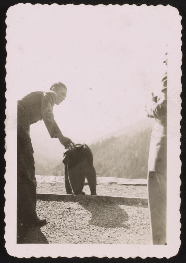 a man pets a bear