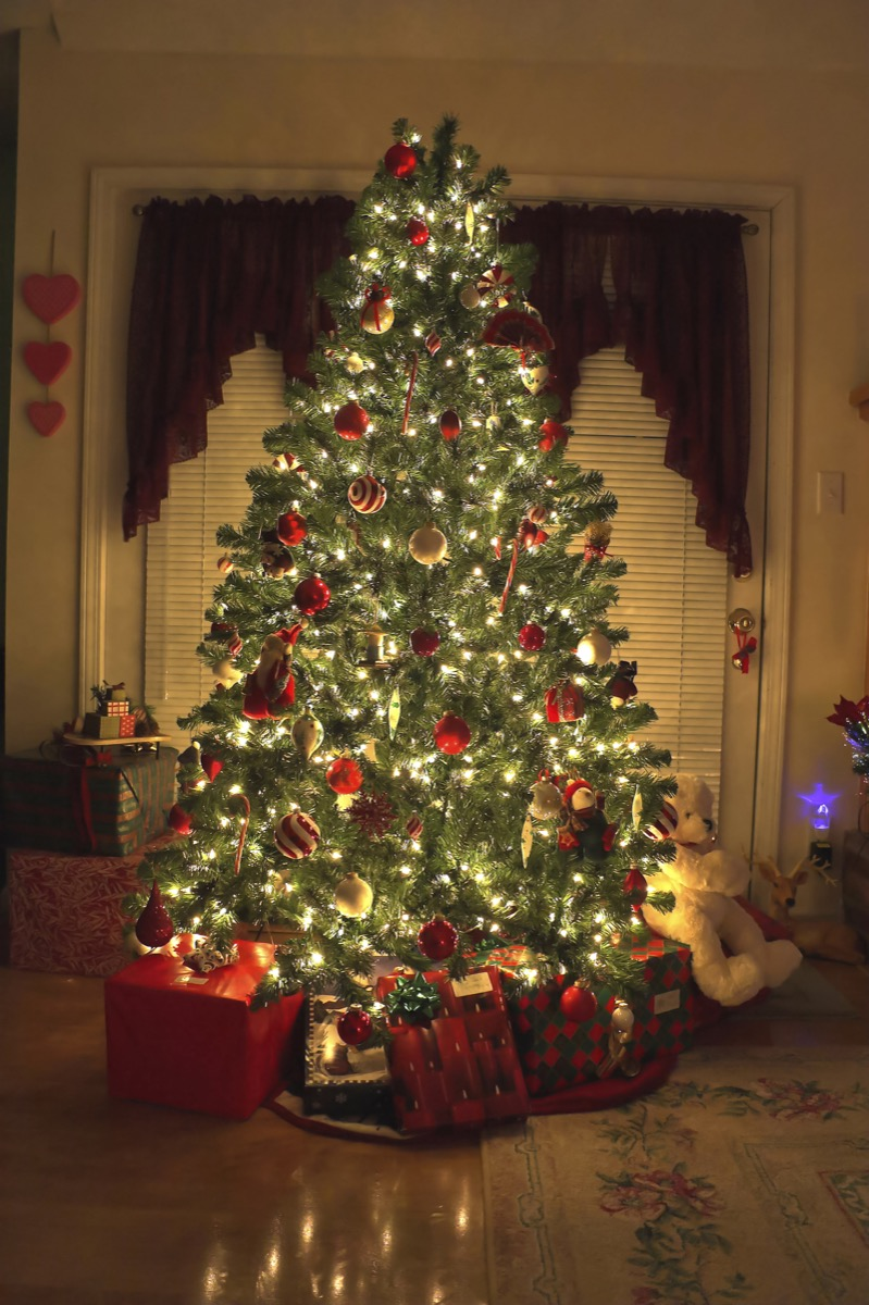 christmas tree in the middle of a room
