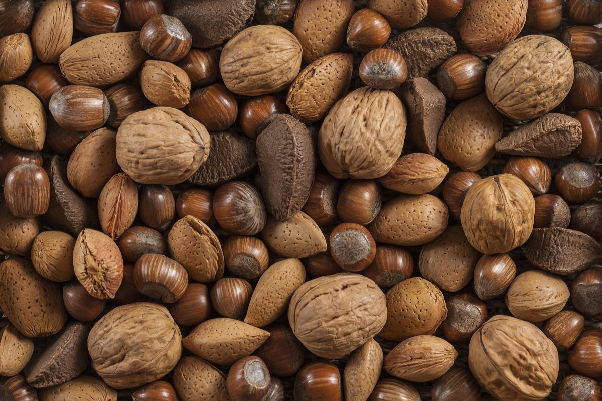 different kinds of nuts in shells