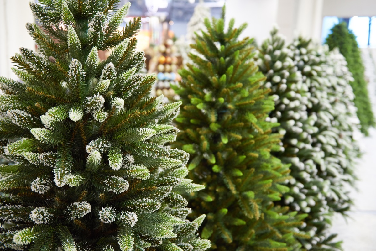 fake christmas trees in the store