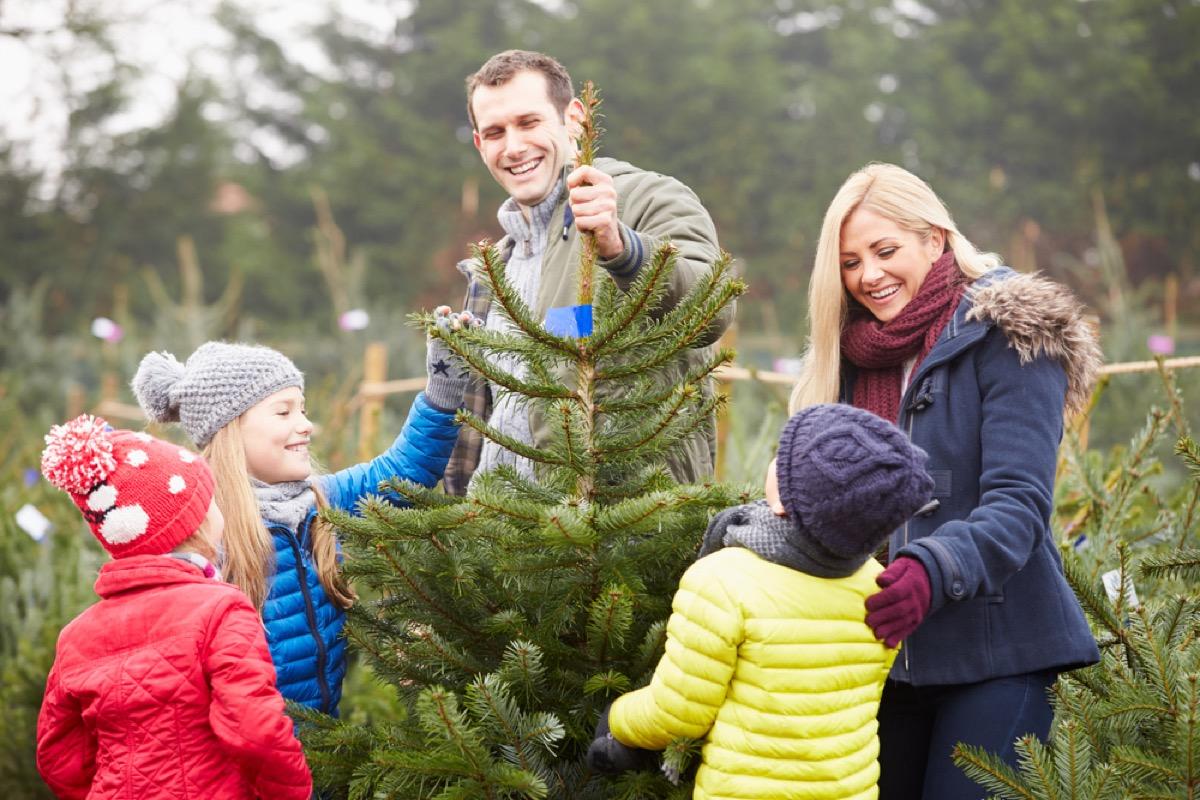 white family choosing christmas tree